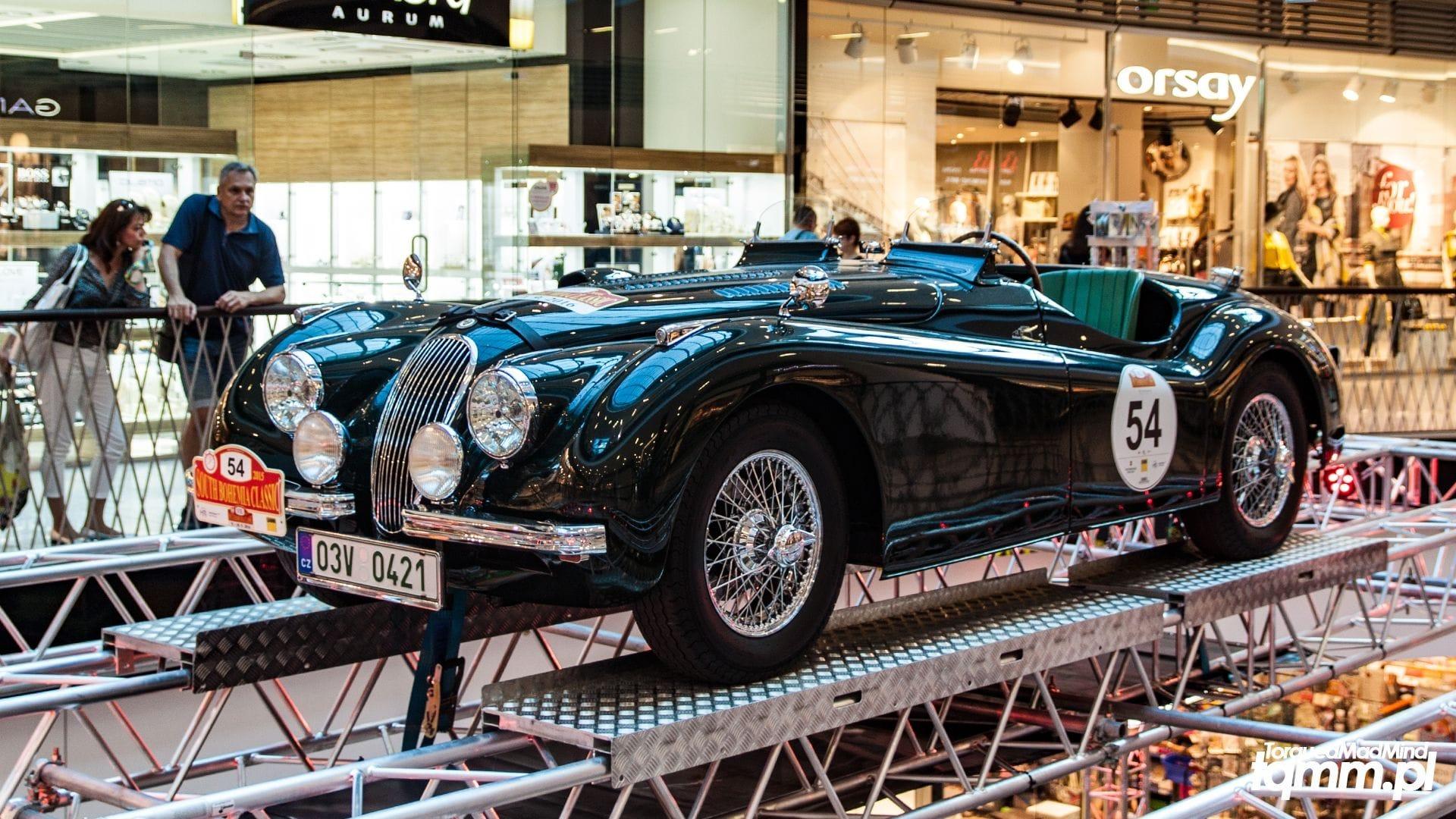 Fotki #81: Jaguar w centrum handlowym.